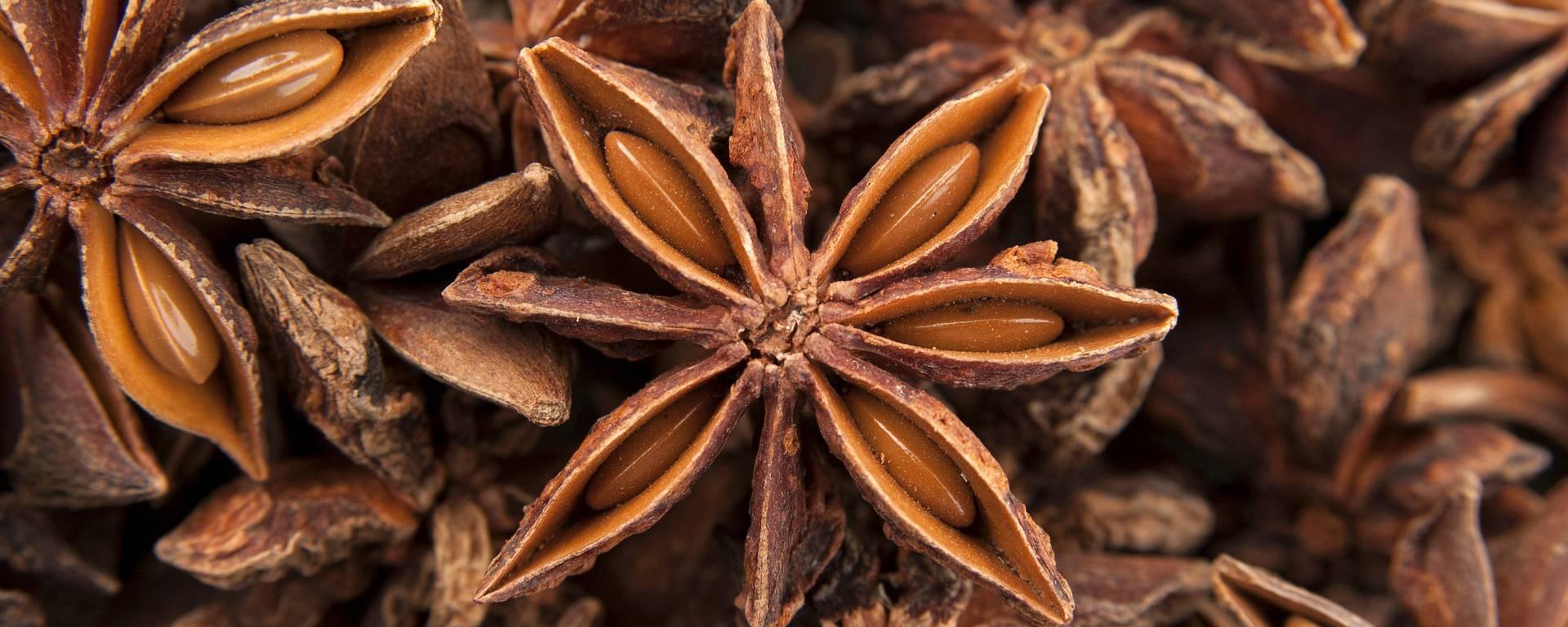 anis tisane bien-être cocconing herbes plantes nature