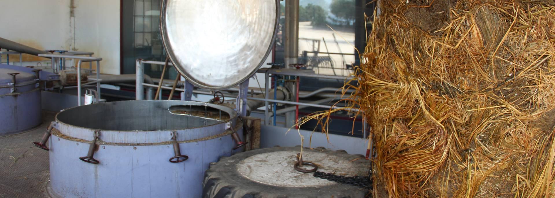 Distillerie de lavande