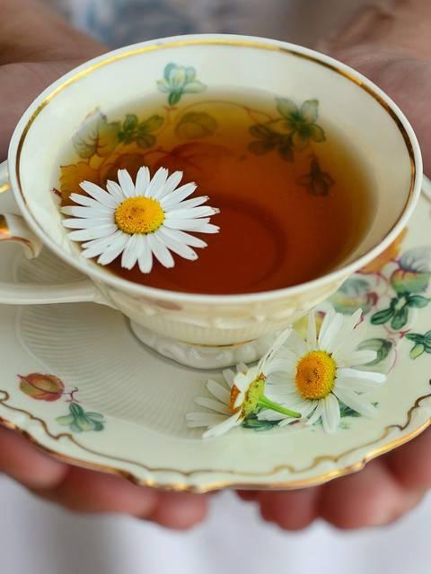 tisane nature verveine thym menthe bien-être fleur