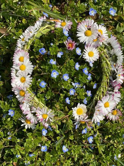 couronne de fleurs marguerite pâquerette printemps luberon