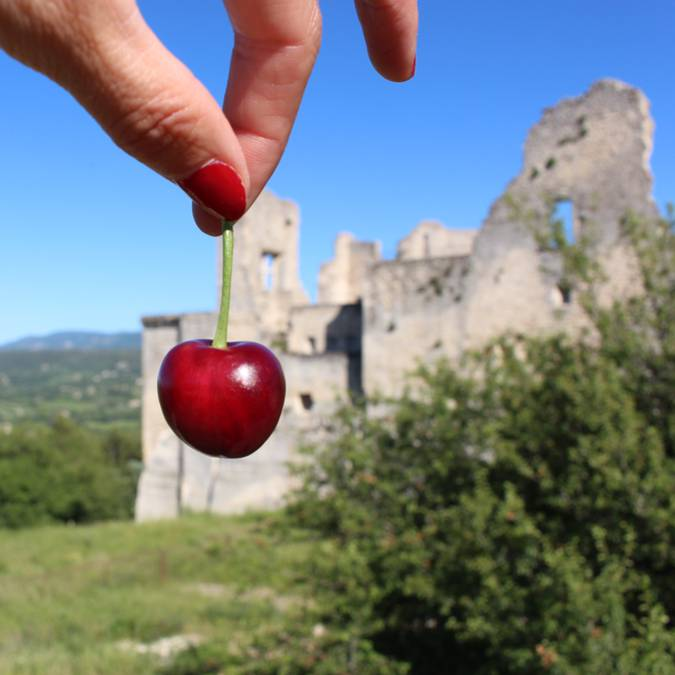 Cerise du Luberon | Lacoste | Château de Lacoste | Vallée | Vue