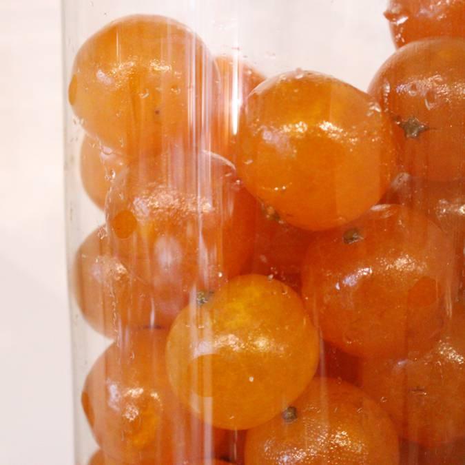 Fruits conifits