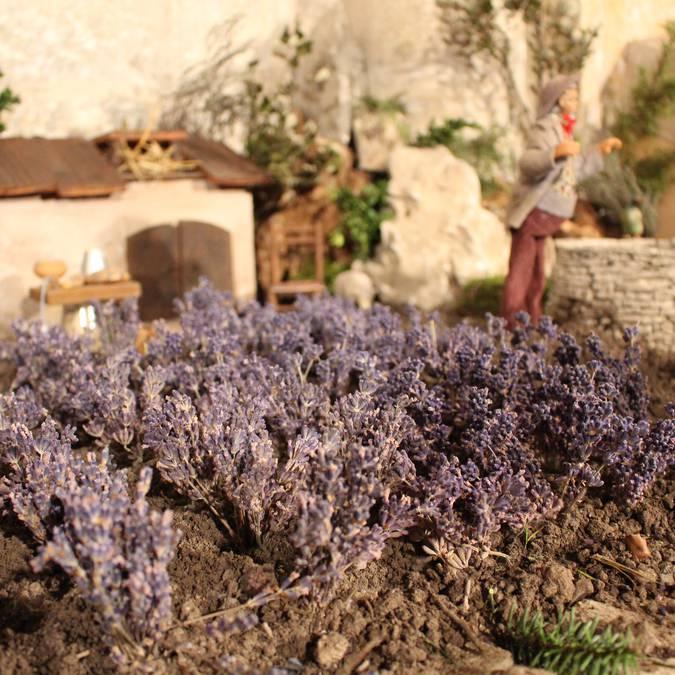 Creche provençale champ de lavande