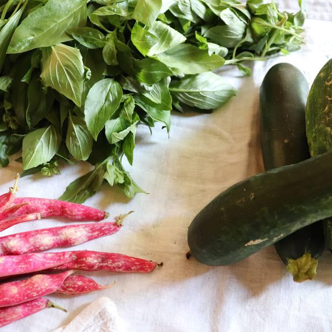 Légumes | Basilic | Haricots verts plats | Haricots coco rouges