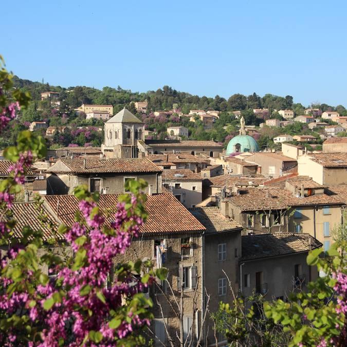 Ville | Apt | Cathédrale | Luberon