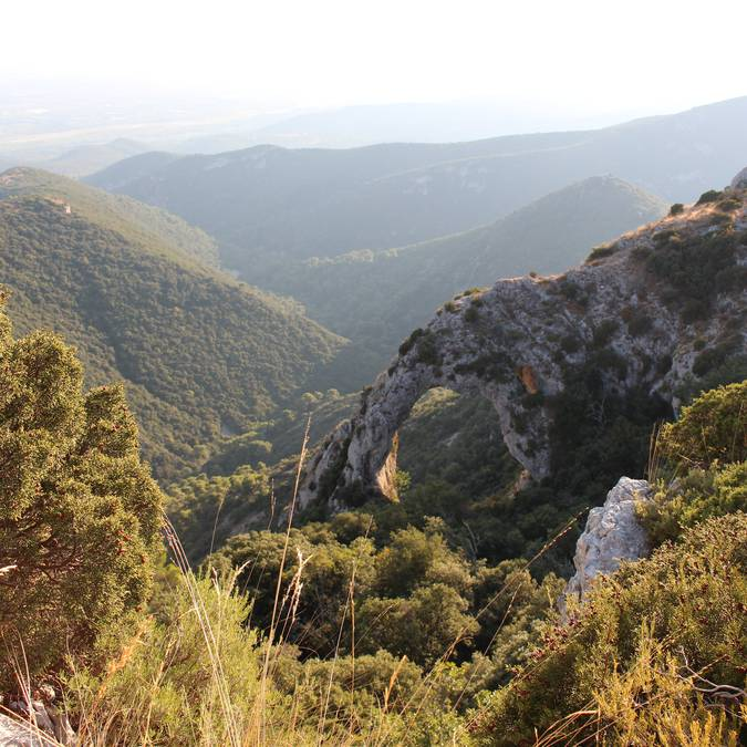 Arche du portalas | Forêt des Cèdres | Vue panoramique
