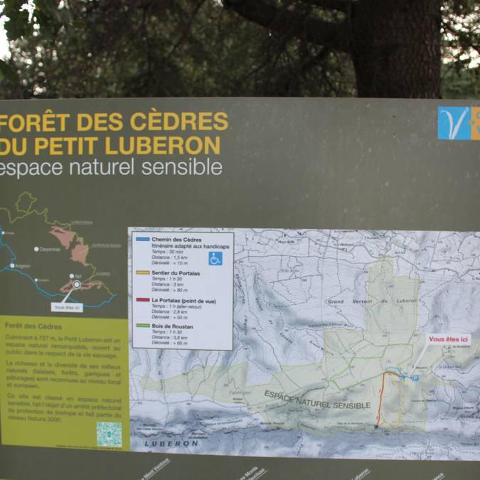 Panneau | Circuit pédestres | Forêt des Cèdres | Petit Luberon