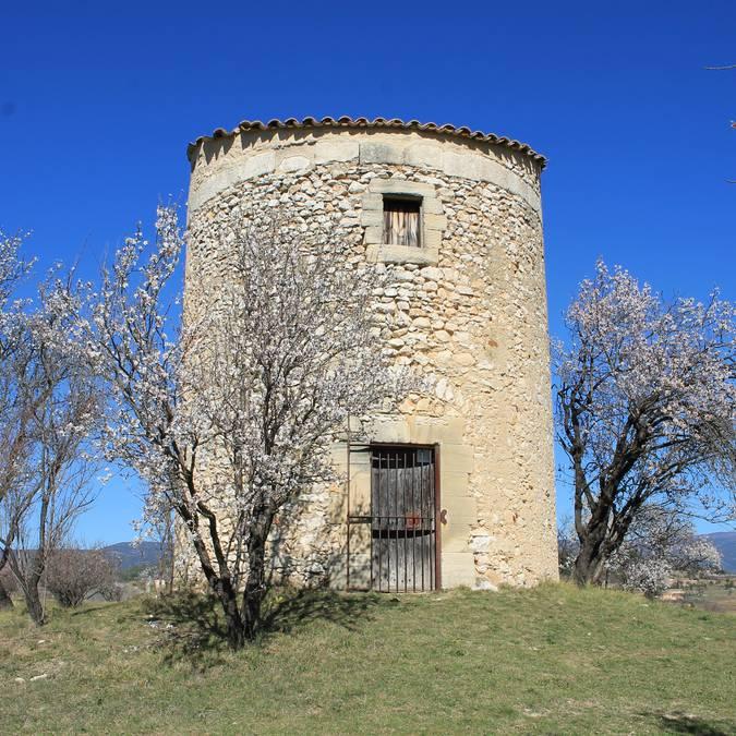 Moulin de Salignan | Fleurs | Printemps