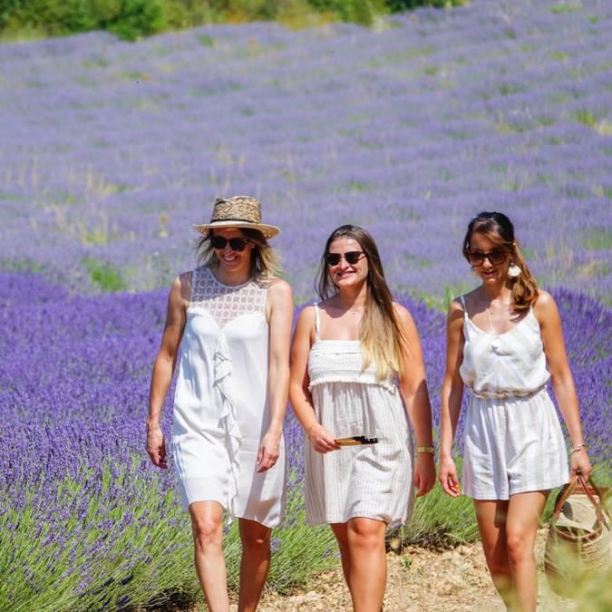 Champs de lavande du Luberon | Femmes | Balade