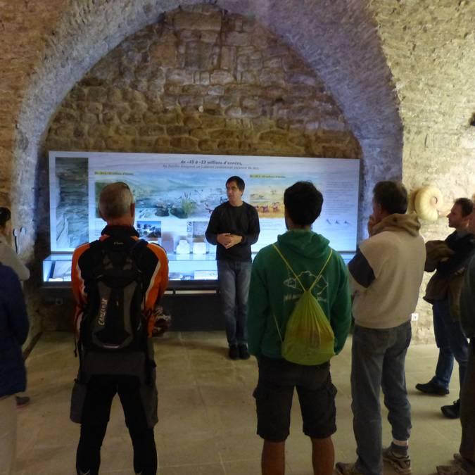 Visite du musée de la géologie