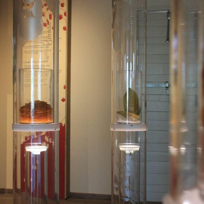 Musées|Luberon | Visites | Découvertes | A faire | Incontournable du Luberon