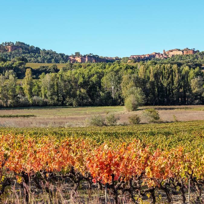 Roussillon | Automne