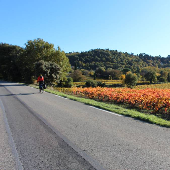 Cycliste sur route