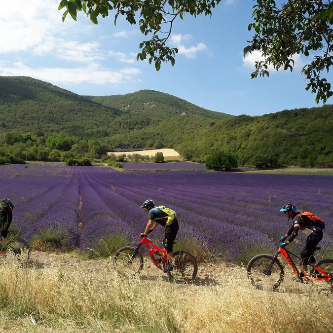 VTT Luberon | Espace VTT Provence Luberon Lure |